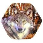 """Магнит """"Волк"""", шестиугольный, 6 x 6 см"""